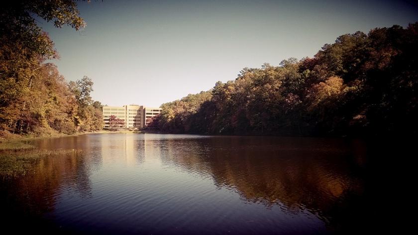 Camera360Pro_Lake
