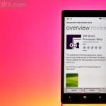 Новое приложение Windows Previewer раскрывает подр...