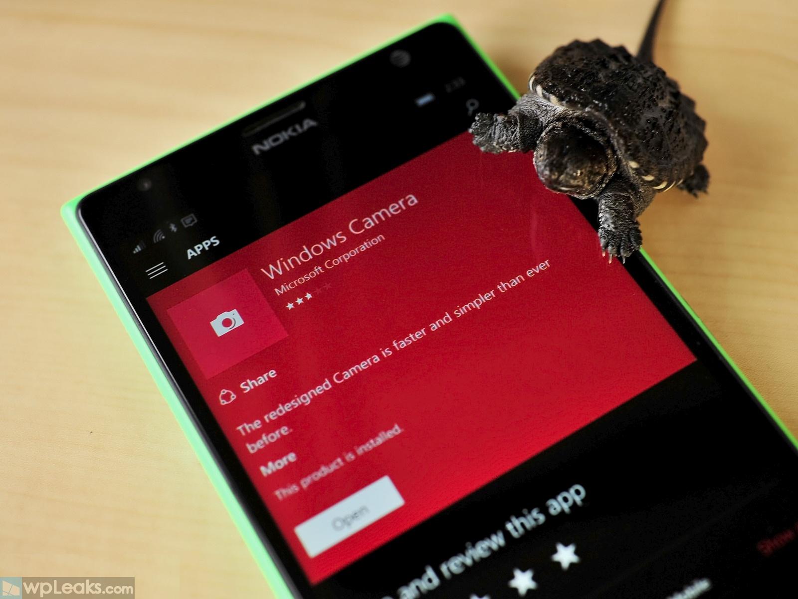slow-mo-windows-camera-turtle