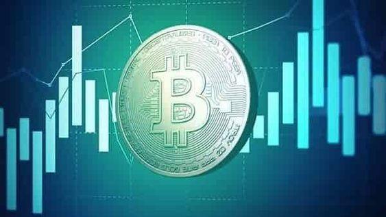 kriptovaluta-koshelki